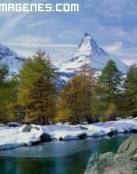 Paisaje helado de Suiza