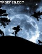 Imagen de unicornios en la noche