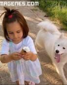 La niña, el helado y el perro