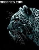Leopardo en 3D