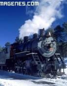 Paisaje nevado desde el tren