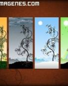 Imágenes las cuatro estaciones