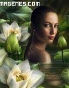 Belleza entre flores