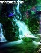 Maravilloso mundo de fantasía