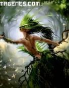 La princesa del bosque